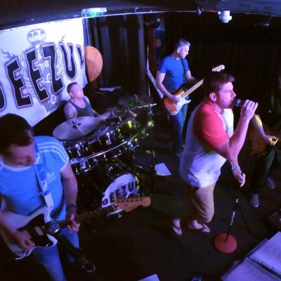 Deezul Live music band