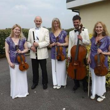 Carlton Ensemble Strings & Flute Ensemble