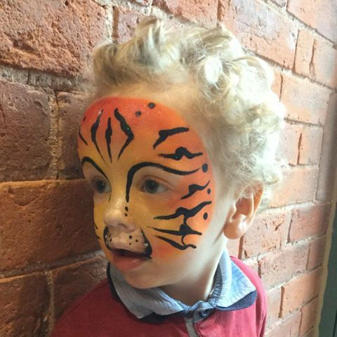 Tigercheeks Face Painting & Glitter Tattoos Face Painter