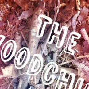 The Woodchips Function & Wedding Music Band