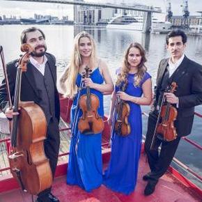 Giardino Strings Cellist