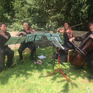 The Bay Quartet Ensemble