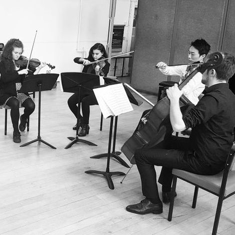 Belgard String Quartet Ensemble
