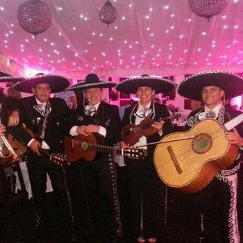 Mariachi Rey Latin & Salsa Band