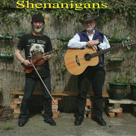 Shenanigans Irish Music Duo Live music band
