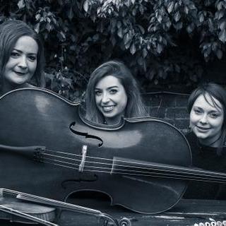 Trifonics Cellist
