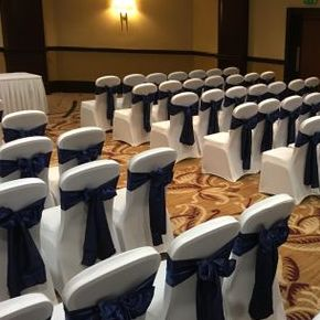 5 Monkey Events Chair Covers
