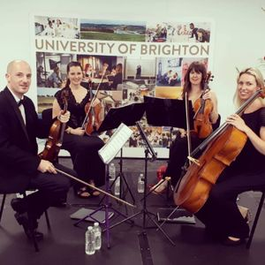 Brighton String Quartet String Quartet
