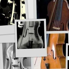 ASTARIA ENSEMBLE String Quartet