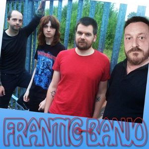 Frantic Banjo Live music band