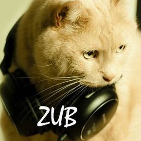 ZUB Acoustic Band